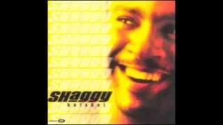 Chica Bonita - Shaggy ft. RikRok