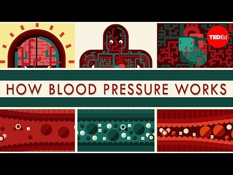 Blood Pressure: All You Need to Know