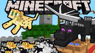 Minecraft DRAGON BOY - Itty Bitty Kitty City! - Episode 5 (Super Hero Story & Improv Adventure)