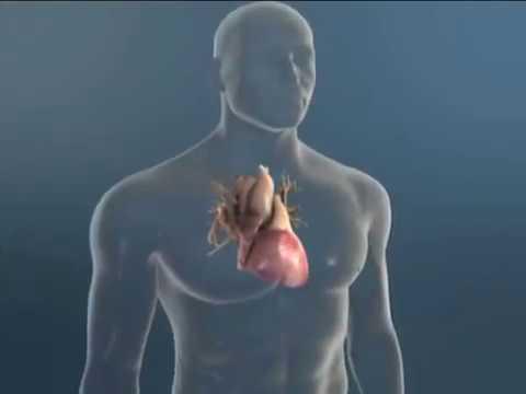 Ace inhibitora u hipertenzije