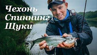 Поклевки ЖЕСТЬ! Рыбалка на Верхней Волге. Розыгрыш Zetrix Arte - Fishing Today