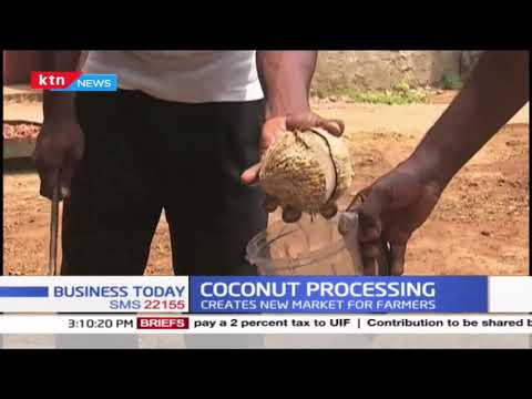 Coconut processing: Coconut oil on high demand, the industry has created new value chain