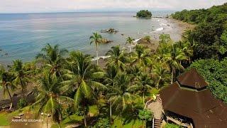 La selva y el mar se encuentran en el Chocó