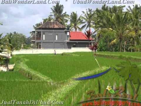 2.100 m2 Lahan  view  sawah gunung dan tebing di Ubud TJUB423