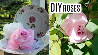DIY REALISTIC COFFEE FILTER ROSES🌹DOLLAR TREE QUICK & EASY TUTORIAL