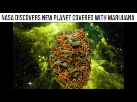 NASA discovers new planet covered with marijuana (Videos ...