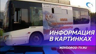 На новгородских автобусах появилась социальная реклама с изображениями животных