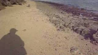preview picture of video 'Walking the Shore - Hau'ula, Ohau'