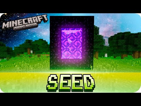Fastest Nether Portal Seed Ever with a Village at spawn