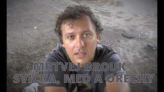 Video Mrtvej Brouk - Svíčka,med a ořechy