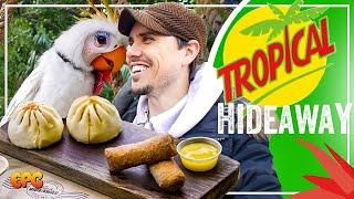 NEW Disneyland Food & Restaurant - TROPICAL HIDEAWAY Opening! Food Tasting!