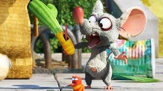 LARVA - CACTUS | Cartoon Movie | Cartoons For Children | Larva Cartoon | LARVA Official
