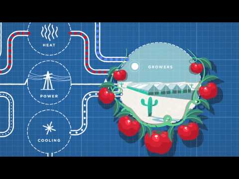 Growing Food in the Desert with Seawater