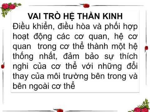 Sinh 8- BAI 43 GIOI THIEU CHUNG HE THAN KINH