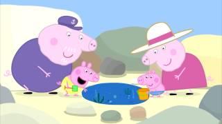 Cвинка Пеппа - Мама свинья и папа свин учат свинку Пеппу как выбрасывать мусор #DJESSMAY
