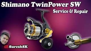 Shimano twin power 15 sw 4000