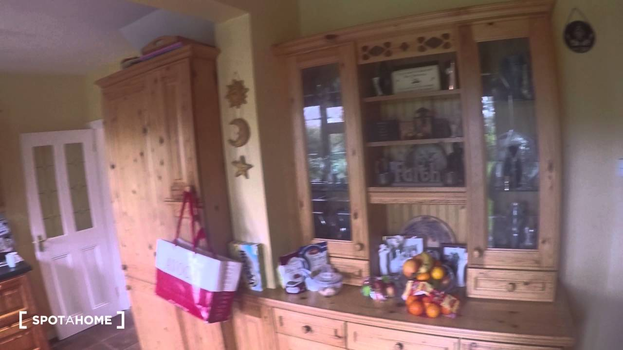 1 Room to rent for professionals in cosy house with garden in Perrystown area