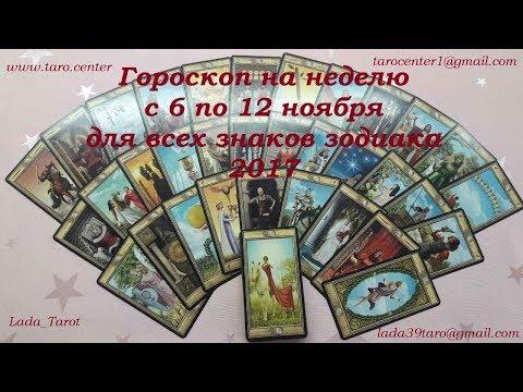 Год кота 2011 гороскоп на