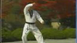 taekwondo poomse 17 ılyo