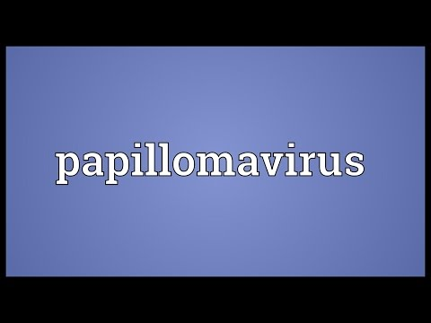 Solitary papilloma of larynx