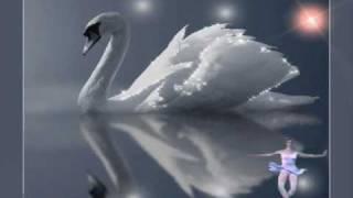 К.Сен-Санс_Карнавал животных-Лебедь