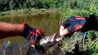 Рыбалка в иркутске на ушаковке