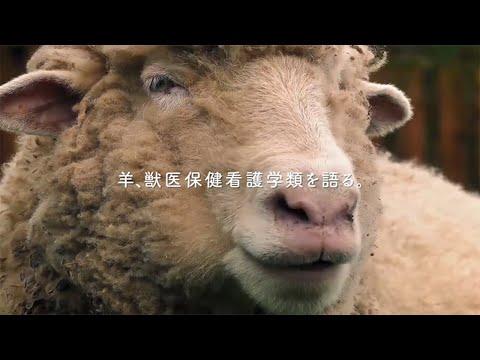 「動物たちの証言」~ 獣医保健看護学類