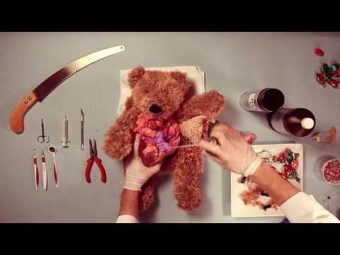 Méďova operace