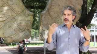 """Jorge Marín habla de su obra """"Alas de la ciudad"""", que se exhibe en el parque Discovery Green"""