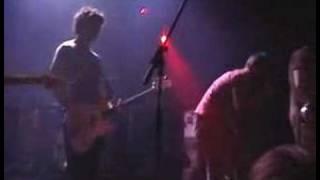 Bear vs Shark - Seven Stop Hold Restart (Live)