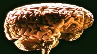 Naked Science - Telepathy