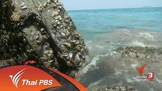 """ที่นี่ Thai PBS - นักข่าวพลเมือง : """"ต่อยหอยติด"""" วิถีชีวิตชาวเลราไวย์"""