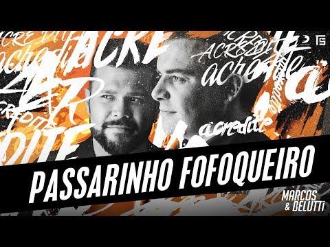 Música Passarinho Fofoqueiro (Letra)