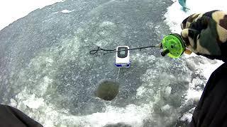 Кинжозеро вологда рыбалка форум