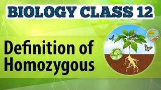 Definition of Homozygous - Genetic Basis of Inheritance - Biology Class 12