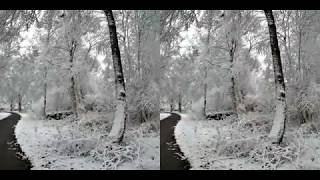 A walk in the snow filmed with the Weeview SID 3D VR  camera