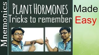 Plant Hormones Tricks And Tips