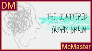 Understanding the scattered (ADHD) brain