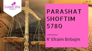Parashat Shoftim 5780