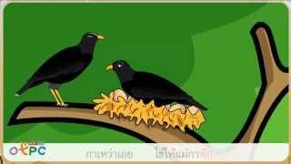 สื่อการเรียนการสอน เพลงกล่อมเด็ก แม่นกกาเหว่า เอย ป.2 ภาษาไทย