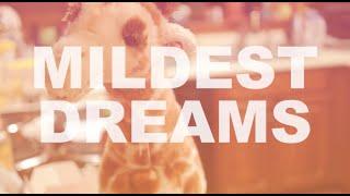 Mildest Dreams (Wildest dreams Taylor Swift Parody) lyrics in CC