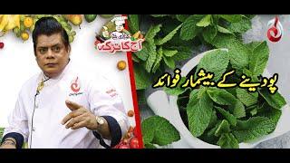 Pudinay Ke Kya Fayde Hai..?  | Aaj Ka Totka by Chef Gulzar