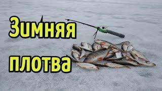 Книга ловля рыбы зимой на поплавочную снасть