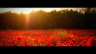 Faithless - Crazy English Summer [HD]