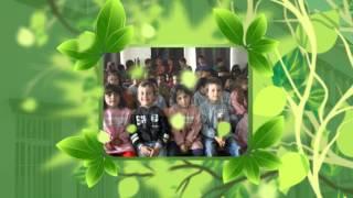 Dia Eco-Escolas 2014