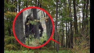 Если встретишь в лесу, наложишь в штаны. Оно существует