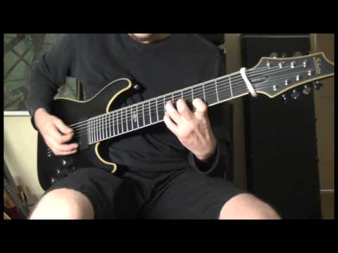 Song Of Solomon - Animals As Leaders (cover)