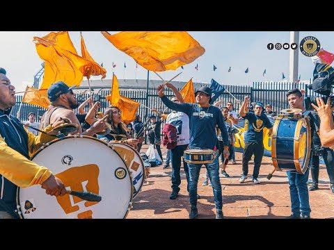 """""""¡Vamos UNAM!"""" Barra: La Rebel • Club: Pumas"""