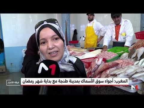 العرب اليوم - شاهد: إقبال متزايد على الأسماك في مدينة طنجة المغربية