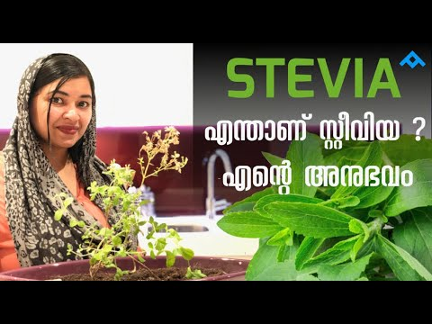 stevia és férgek)